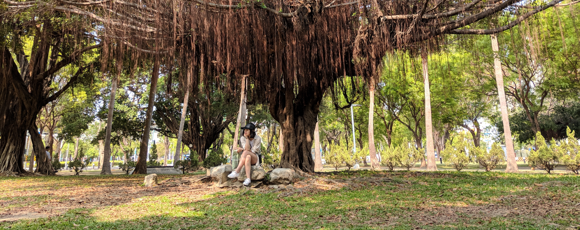 Elysia sitting in front of a tree in Kaohsiung